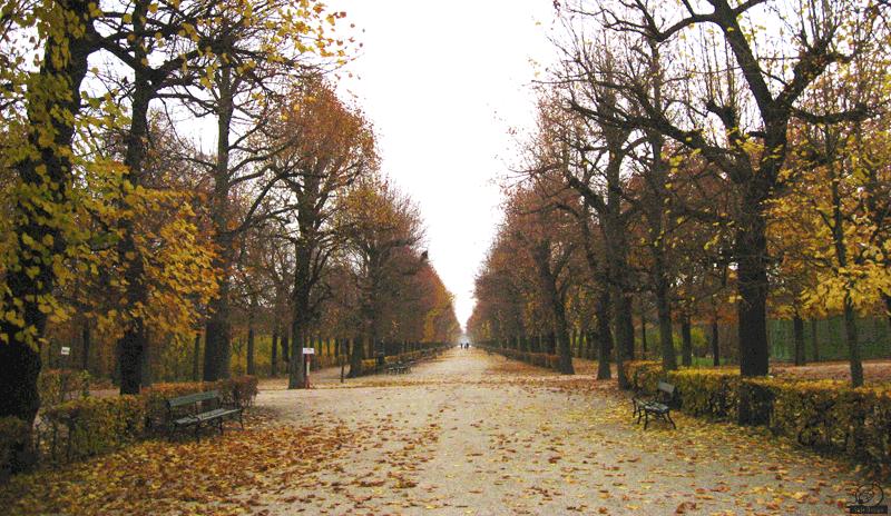 Herbstimpression: Wien, Schloss Schönbrunn